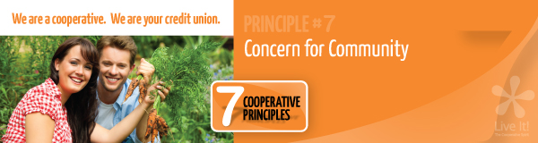 Principle #7: Concern for Community
